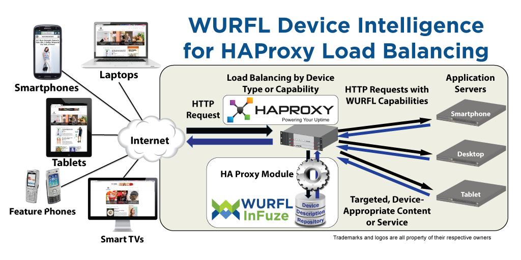 Haproxy Socket